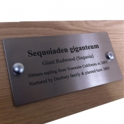 Stainless Steel Bench Plaque marked with markSolid 114